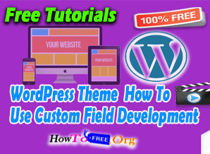 WordPress Theme Development Use Custom Field Tutorials For Free