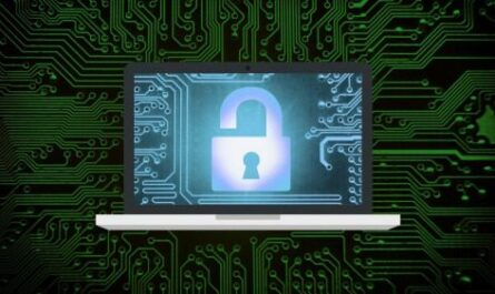 Security Awareness Campaigns (Lite)