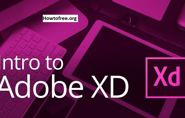 Learn How to Design & Prototype in Adobe XD Free Tutorials Download